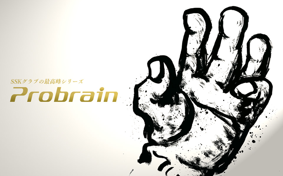 probrainr_main